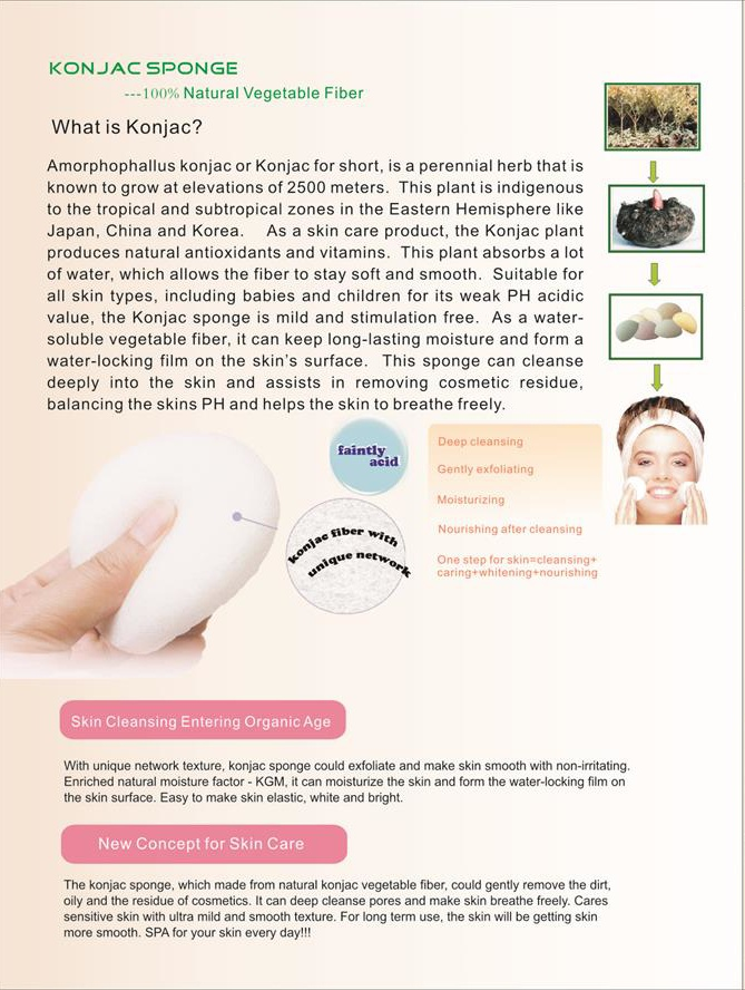 Suprabeauty the best makeup sponge best manufacturer for make up-3