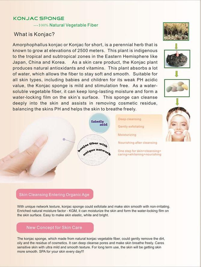 Suprabeauty makeup foundation sponge best manufacturer for beauty-3
