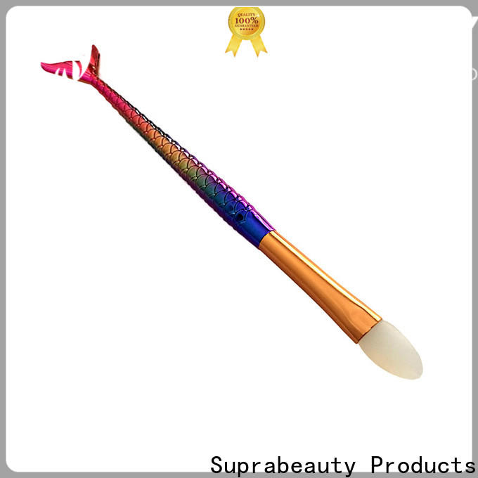 practical cosmetic brush from China for women