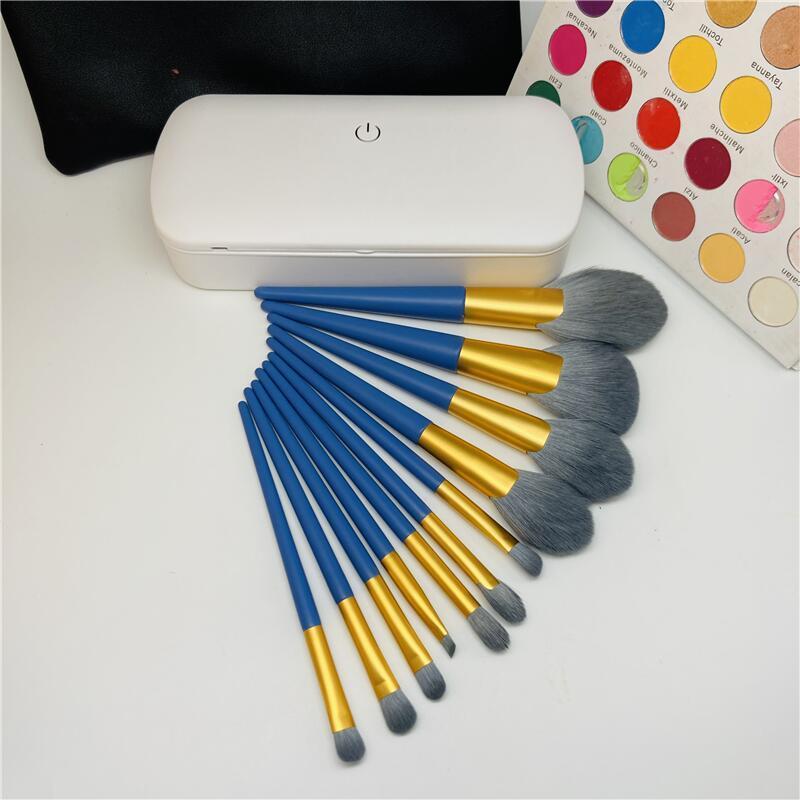OEM Best Makeup Brush Kit With Sterilization Box Packaging